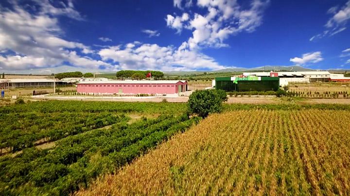 EkosolFarm Vermicompost Fertilizer